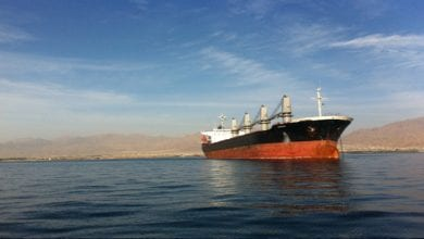 Photo of Diana Offloads Panamax Bulker