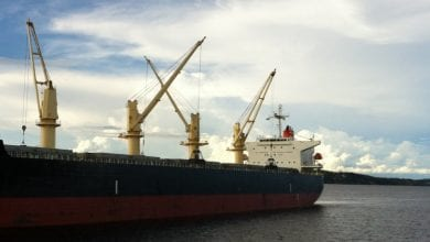 Lower Charter Rate for Diana's Ice Class Panamax