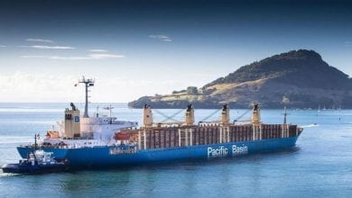 Pacific Basin continues fleet growth with ultramax buy