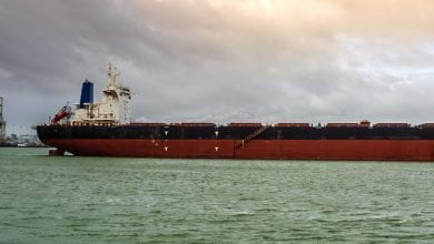 Yangzijiang Shipbuilding Wins Orders for Two 325,000 dwt Bulkers