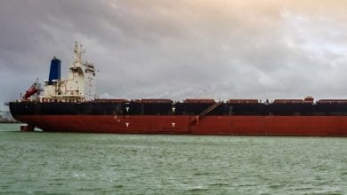Photo of Cargill Extends Charter for Diana's Bulker