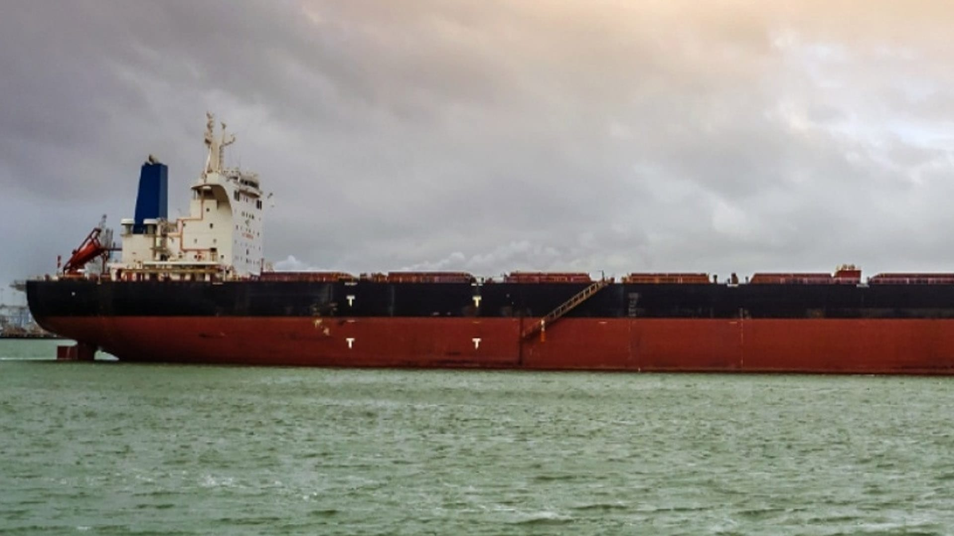 Cargill Extends Charter for Diana's Bulker