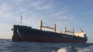 Photo of Wisdom Marine to Order Bulker Pair in China