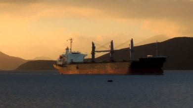 Photo of Diana's Panamax Bulker to Work for Phaethon International