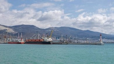 Photo of Russia to Disinfect Ships from Iran, Italy and South Korea