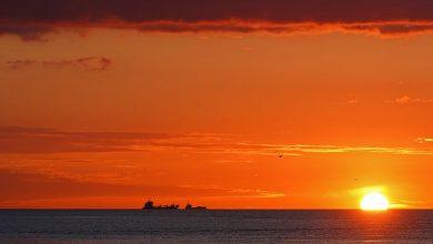 Photo of Grieg Star, G2 Ocean take part in Norwegian autonomous ship project