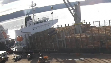 Photo of Auckland court fines stevedoring company for dropping 15-tonne excavator from a ship's crane