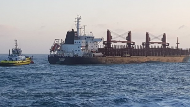 Photo of Log carrier loses power off New Zealand coast