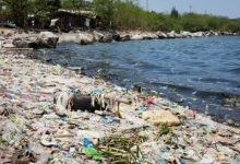 Photo of How Does Plastic Pollution Affect the Ocean?