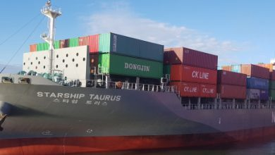 Photo of Namsung Shipping orders feeder boxship pair at Dae Sun