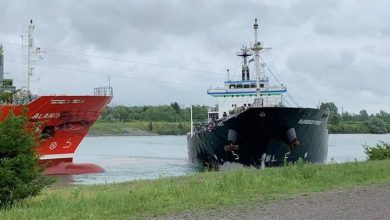 Photo of Video: Ships Collide Head on in the Welland Canal