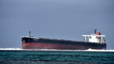 Photo of International Aid for Mauritius with Bulker Environmental Disaster