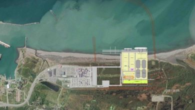 Photo of APM Terminals, PNTC to develop a new dry bulk facility in Poti Sea Port