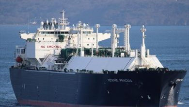 Photo of LNG carrier crew member kidnapped in Equatorial Guinea