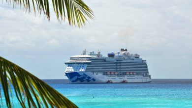 Photo of CDC Says Cruise Ships Pose Very High Risk for Coronavirus