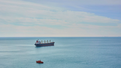 Photo of Baltic Index at 3-week High as Vessel Rates Climb