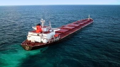 Dry Bulk Market Are Further Disruptions On the Horizon